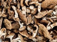 Лесные грибы сушеные