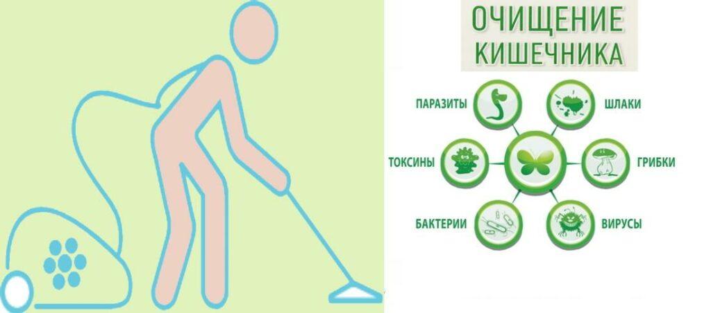 Очищение кишечника от токсинов и шлаков