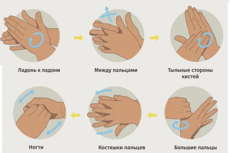 Как правильно мыть руки для защиты от коронавируса