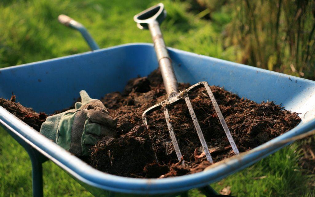 Готовый компост применение