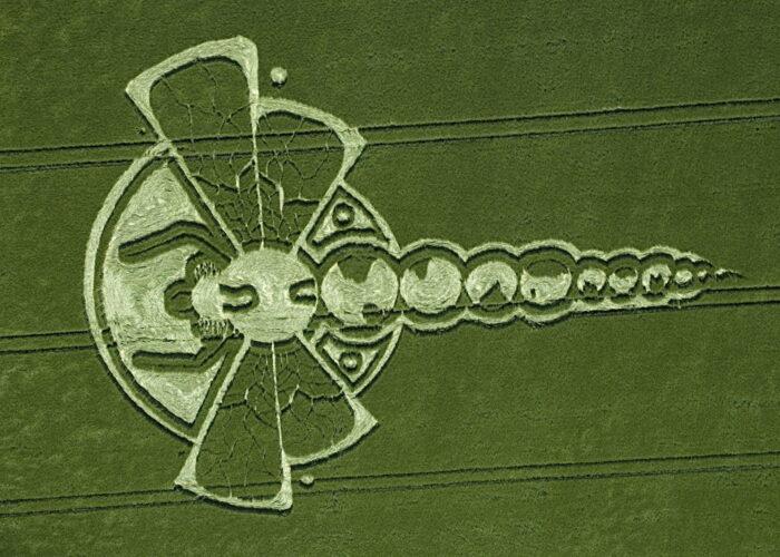 Круги на полях — сложный рисунок в виде стрекозы